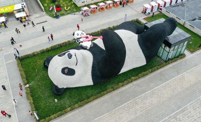 """Chuyện """"cầu bại"""" thời hiện đại của giới trẻ Trung Quốc"""