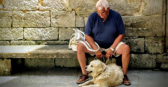 Những con vật nuôi giúp giảm tỉ lệ tự tử ở người cao tuổi